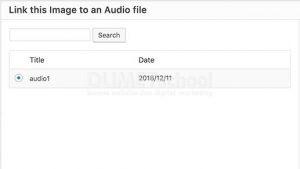 Cara Menambahkan Audio ke Gambar yang Diunggah di WordPress