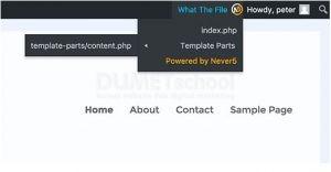 Cara Mencari Template yang Ingin Diedit di WordPress