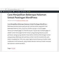 Cara Menjadikan Beberapa Halaman Untuk Postingan WordPress