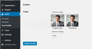 Cara Menambahkan Foto Penulis di Situs WordPress