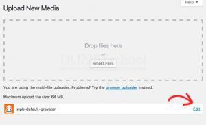 Cara Mengubah Gambar Default Gravatar Di WordPress