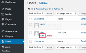 Cara Menambahkan Link Akun Twitter Dan Facebook Di WordPress