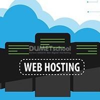 Pentingnya Domain dan Webhosting Premium untuk WordPress